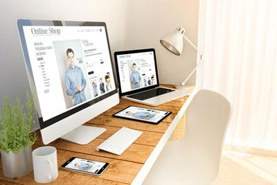 Fertiger Onlineshop Platin